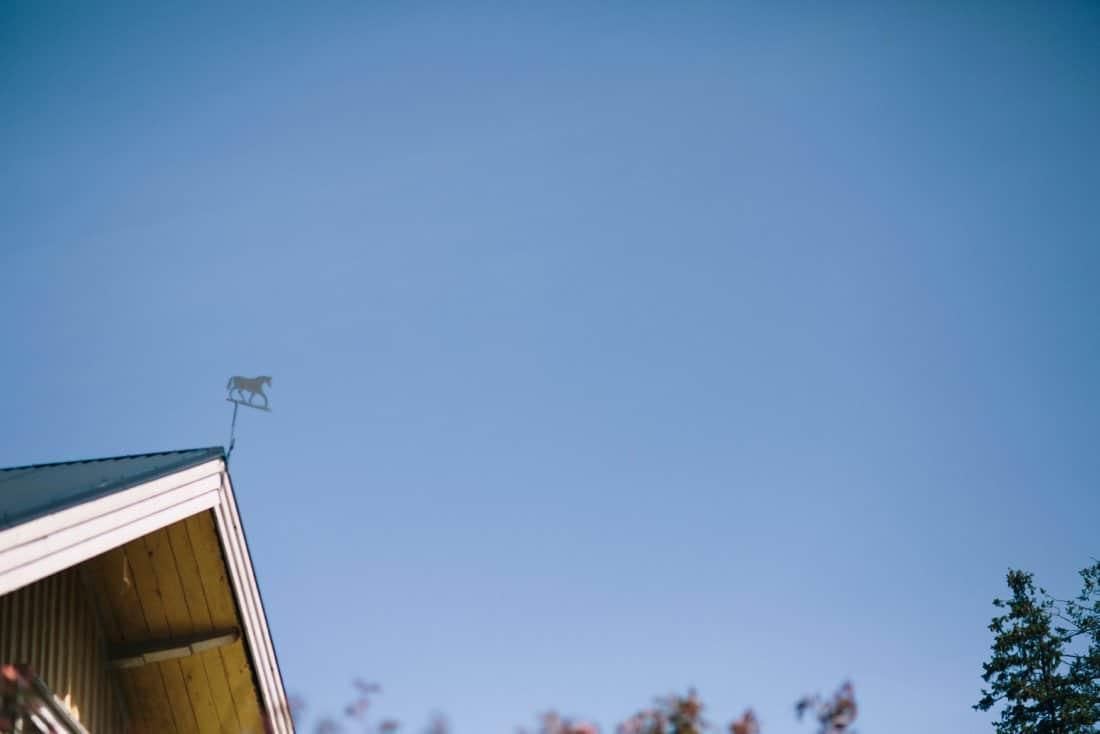 böllop blå himmel